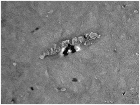 Nanolinter®  ürünün geçirimli elektron mikroskobu altında 250.000 kez büyütme görüntüsü
